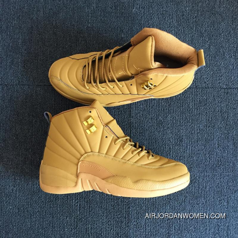 963bddcebb3 Air Jordan 12